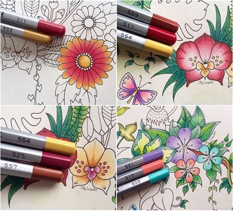 best colored pencils to use for coloring books 531 best johanna basford magical jungle images on