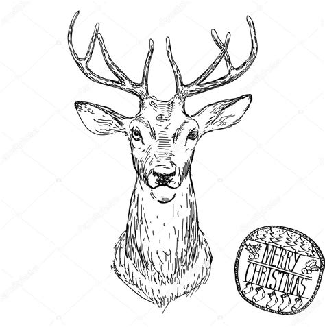 deer head vector animal illustration for t shirt sketch