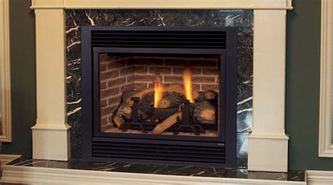 Gas Stoves Fireplace by Traditional Gas Fireplaces