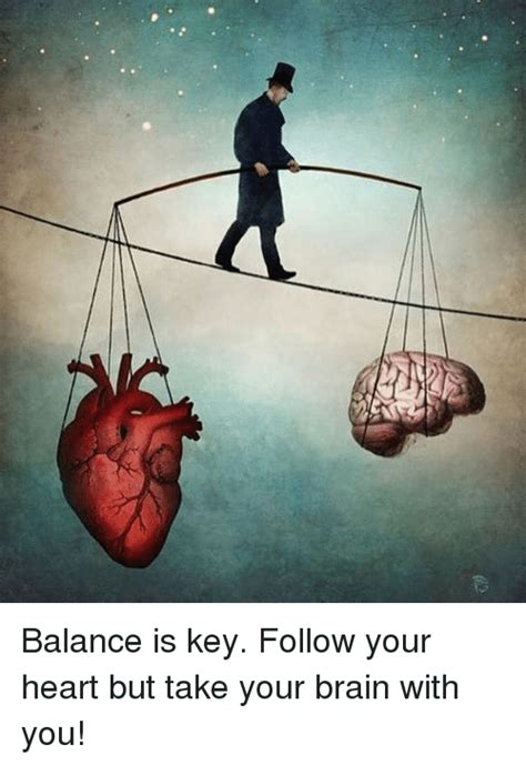 Follow Your Heart Meme - balance is key follow your heart but take your brain with