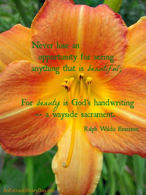 Heart Home Decor Beauty Is God S Handwriting Emerson Quote The Week
