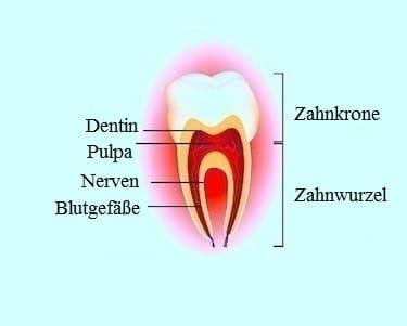 wann beginnt fieber bei säuglingen zahnprobleme bei kindern milch zahnschmerzen fieber