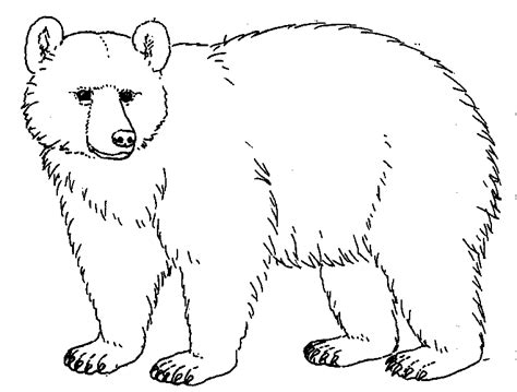 free printable coloring pages black bear brown bear clipart black and white pencil and in color