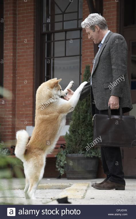 hachiko a s story hachiko a s story stock photo 48351623 alamy