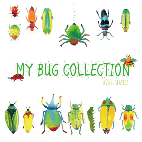 clipart collection my bug collection watercolor clip bugsinsectwall