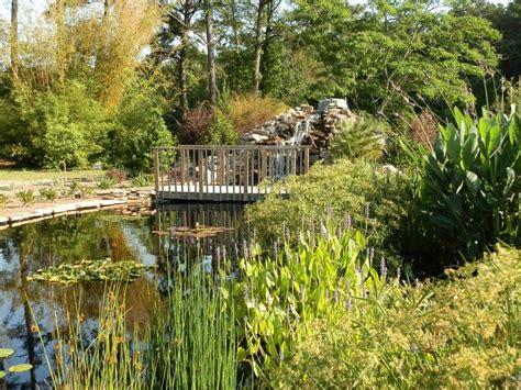 the water garden at the coastal botanical gardens