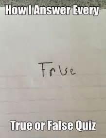 How i answer every true or false quiz memes comix funny pix