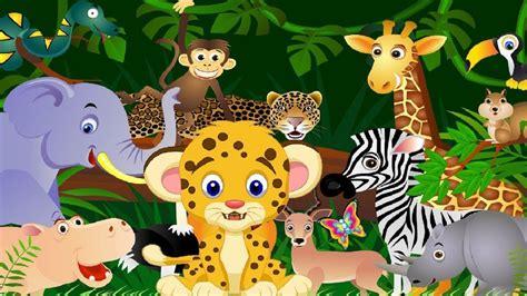 imagenes de animales salvajes para niños animales salvajes para ni 241 os preescolares youtube