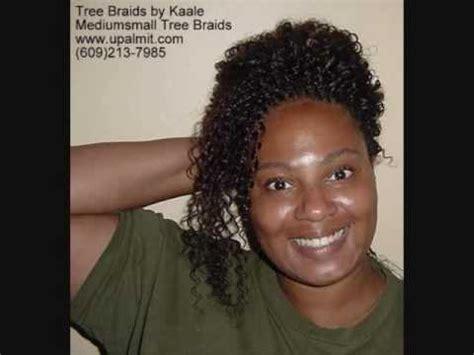 cornrow tree braids vs individual tree braids tree braids kinky curly cornrow treebraids designs 2