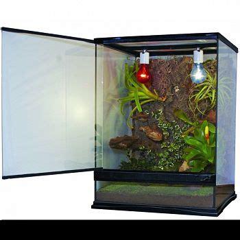 naturalistic terrarium xx  aquarium supplies