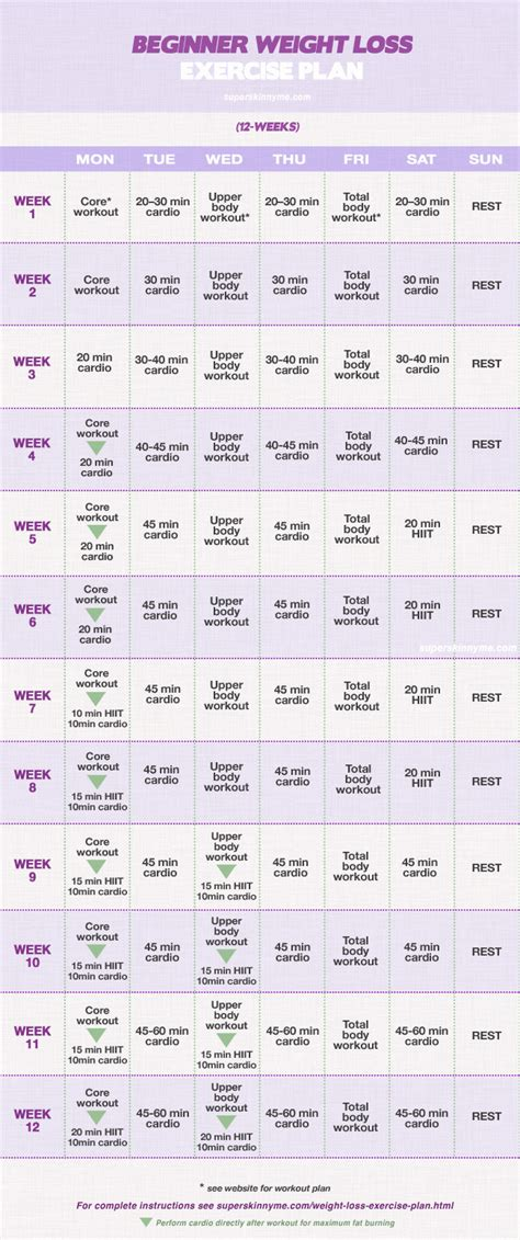 printable exercise program for beginners weight loss exercise plan full 4 12 week workout program