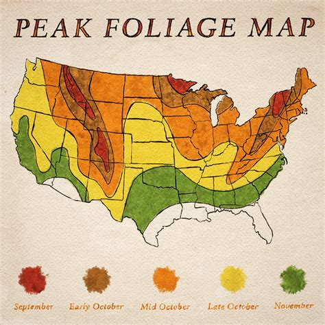 foliage map new company will ship autumn foliage for 19 99 wee s