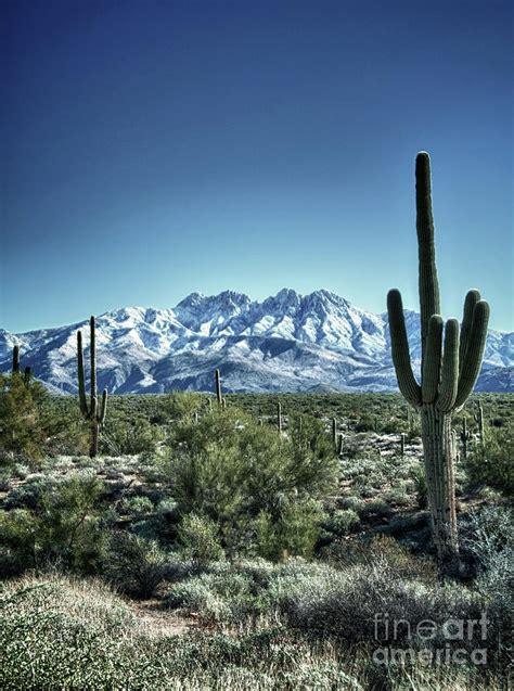 desert snow desert snow by saija lehtonen