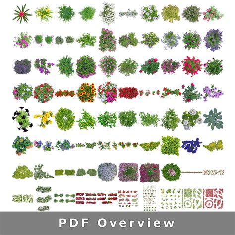 Flower Garden Plans Layout Top View Flowers Cutout Plan View Images Png For Garden And Landscape Planners