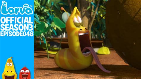 film larva new york official yellow s secret larva season 3 episode 48