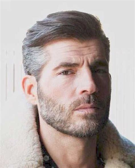 Types Of Grey Hair by 25 Best Ideas About Mens Hairstyles On