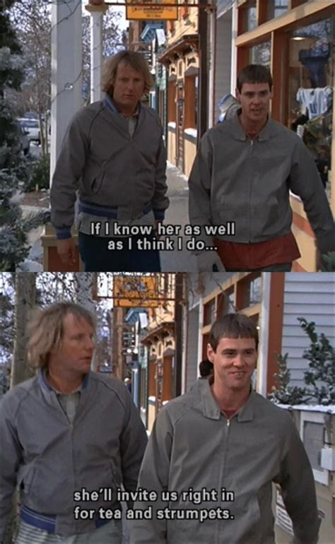Dumb And Dumber Meme - dumb and dumber funny pictures quotes memes jokes