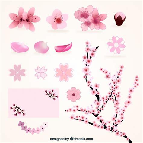 fiori varietà variet 224 di fiori di ciliegio scaricare vettori gratis
