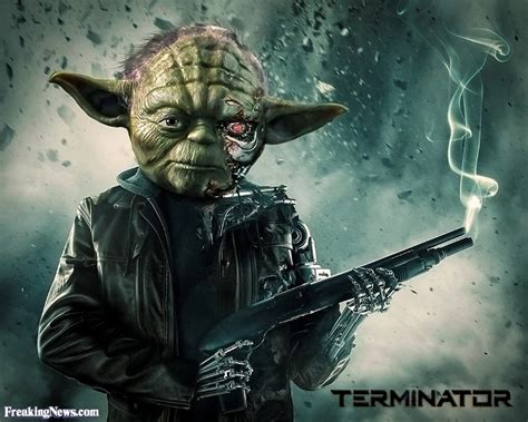 Funny Yoda Pictures   Freaking News