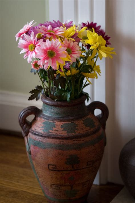 cut flower preservative 6 pro tips for making your fresh cut flowers last longer