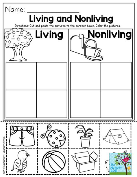 Living And Nonliving Worksheets by 17 Best Ideas About Preschool Social Studies On