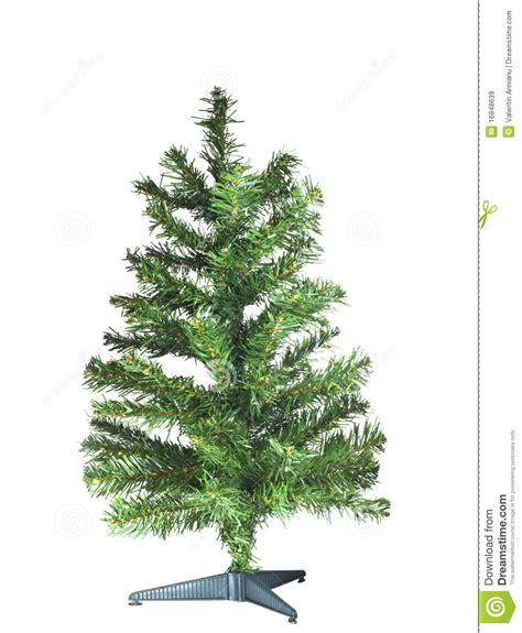bare christmas tree stock image image of branch close