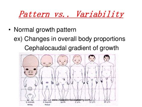 cephalocaudal pattern is from asessment of growth and development in orthodontics