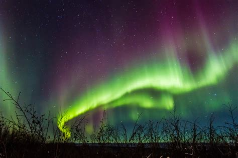 What Are Northern Lights by See Alaska S Captivating Northern Lights On This Fairbanks Tour Los Angeles Times Alaska