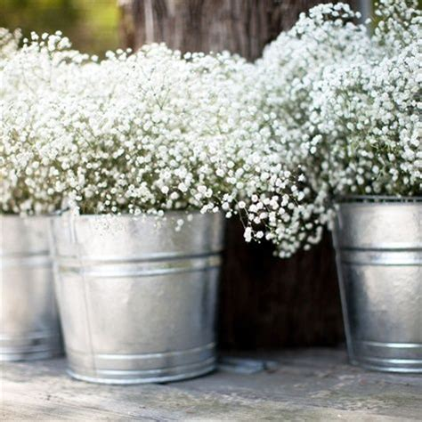 Baby S Breath Tin Buckets Pretty For Summer Party Tin Buckets For Centerpieces