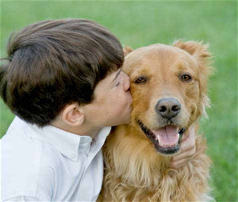 best age to get a puppy what s the best age for a child to get a