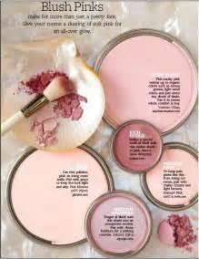 blush paint color 25 best ideas about pink paint colors on pinterest pink