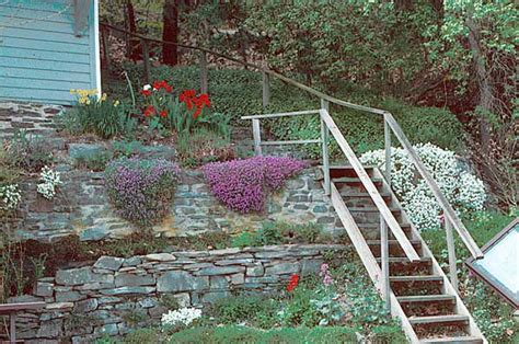 slope garden design slope garden design ideas home designs project
