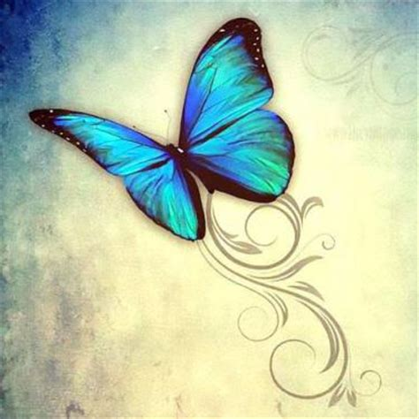 small blue butterfly tattoo hummingbird in birdcage design