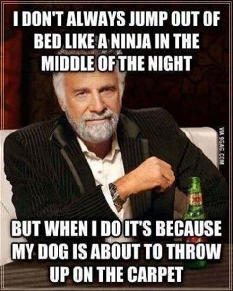 Funny Dos Equis Memes - 211 best images about dos equis man quotes on pinterest
