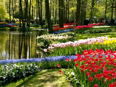 Scenic Photos Scenery Garden Pictures Flower Garden Scenery