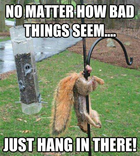 Hang In There Cat Meme - no matter how bad things seem just hang in there