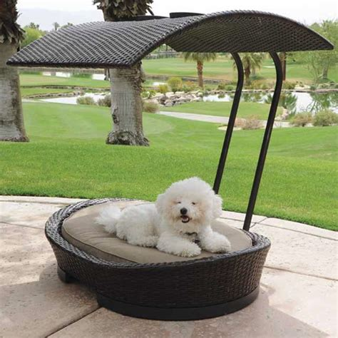 Pet Patio wicker pet bed with sun shade cover family leisure