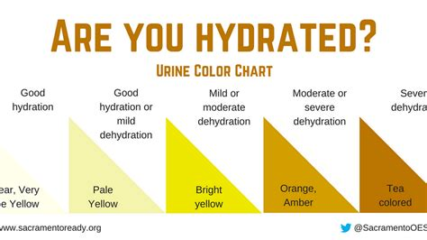 what color should your urine be the color experts say your urine should be during