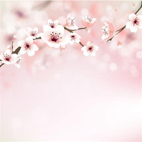sfondi fiori di ciliegio carta da parati fiore di ciliegio biglietti di auguri