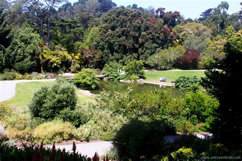 My Botanical Garden San Francisco Botanical Garden Sundays In My City