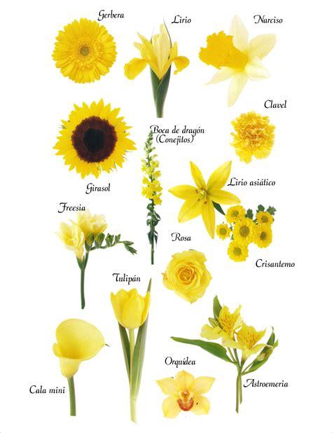 imagenes de flores naturales con sus nombres detalles de boda regalos celebraci 243 n carmen merino 187 ramos
