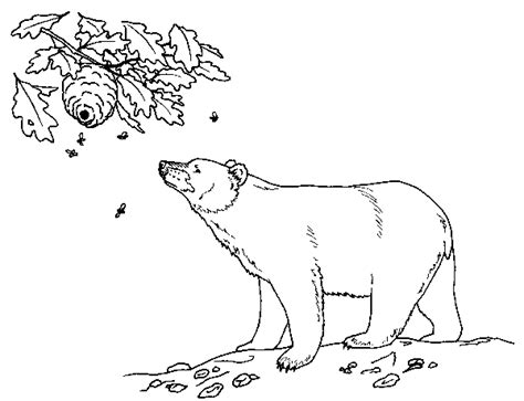 coloring pages black bear black bear coloring page free printable coloring pages