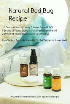 bed bug repellent homemade diy bed bug spray with essential oils oils pinterest