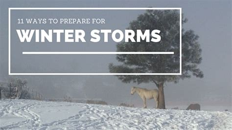 7 Ways To Prep Your Garden For Winter by 11 Ways To Prepare Your Barn For Winter Storms Kimes Ranch
