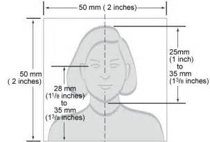Photography Requirements by How To Take A Stellar Passport Photo