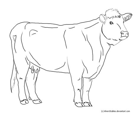 hereford cow coloring page hereford cow line art by ahernstables on deviantart