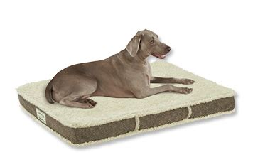 tempur pedic dog beds orvis tempur pedic 174 dream lounger dog bed shearling covers