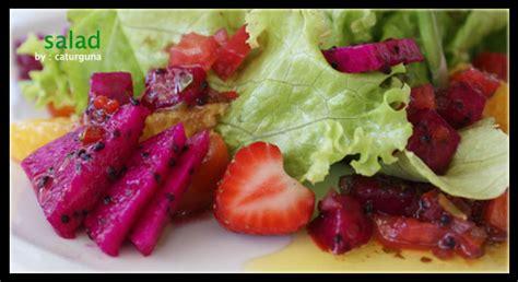 membuat salad buah naga agustus 2011 ummu fayala