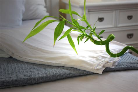 are bamboo sheets comfortable what is a good thread count bamboo rayon