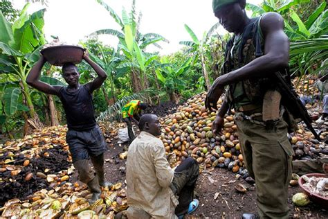 Mansion Global Cocoa Smuggling Mars Ivory Coast Upturn Wsj